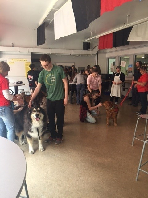 Therapy Dogs at Mt. Baker Secondary School