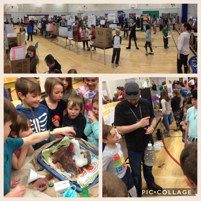 Science Fair at T.M. Roberts Elementary School